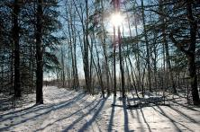 winter in the greenbelt